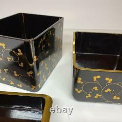 Edo period Japanese Wooden Makie Lacquer Box Rare Japan